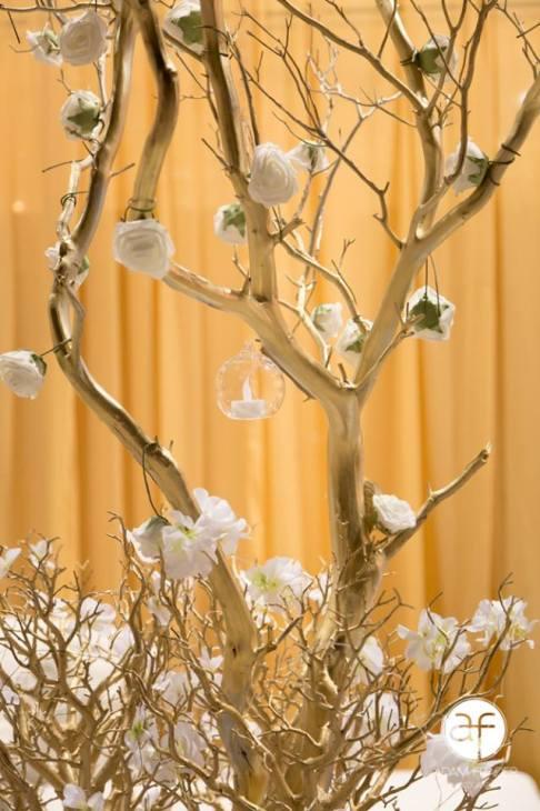 Victoria's Wedding & Receptions 5