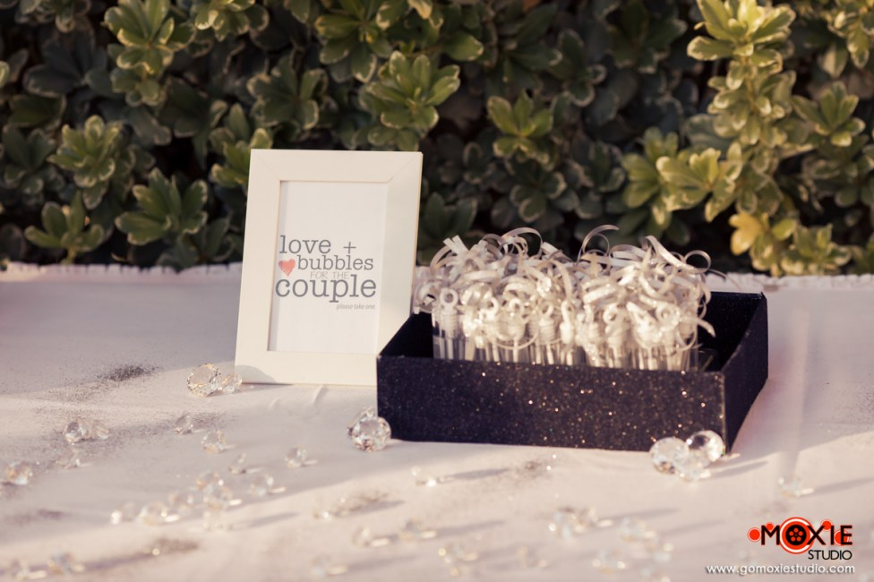 Spectacular Bride features Moxie Studio-Jessica and Damien-5