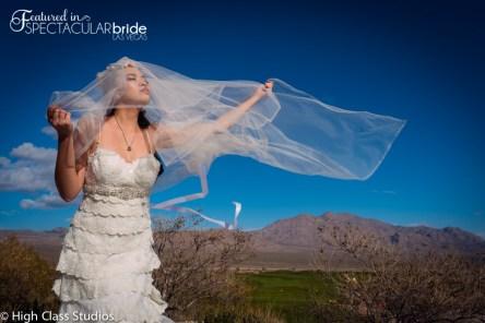 www.HighClassStudios.com_BridalSpec_Submission-20-8-8