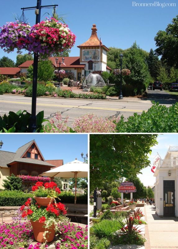 Flowers In Frankenmuth, Michigan In Spring