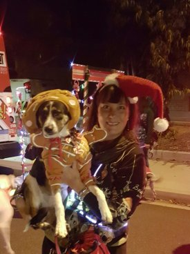 woman holding her dog while both in Renaissance costumes for Christmas light parades