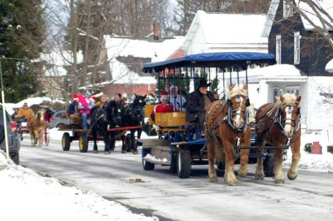 draft horses pulling wagons and carts in Christmas parade in New York