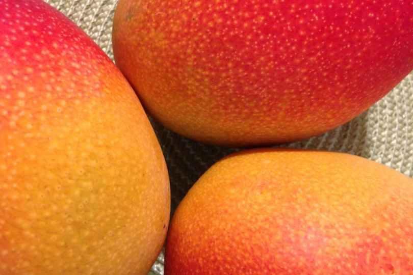 photo of ripe mangoes