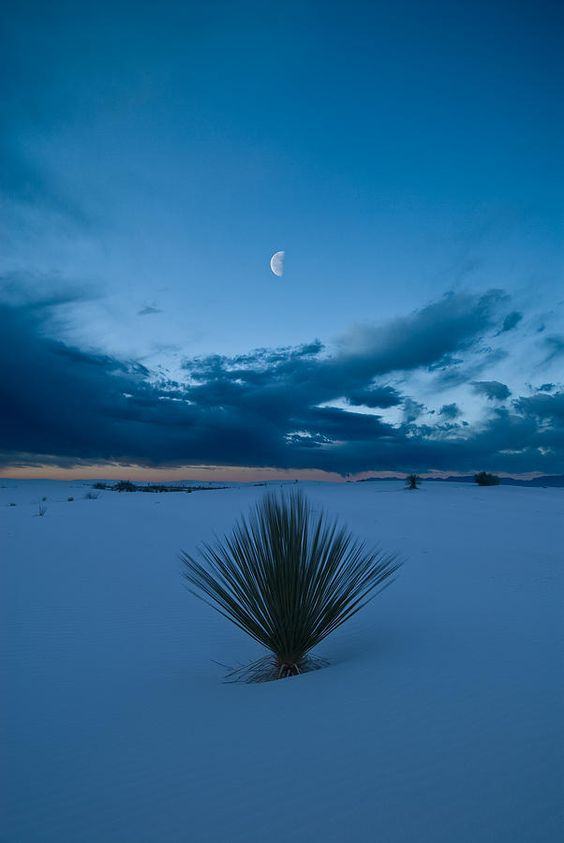 White Sands Moonrise