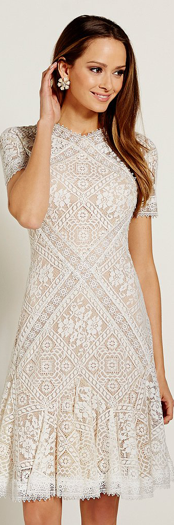 Tadashi Shoji High V-Neck Short Sleeve Illusion Lace Fit & Flare Dress