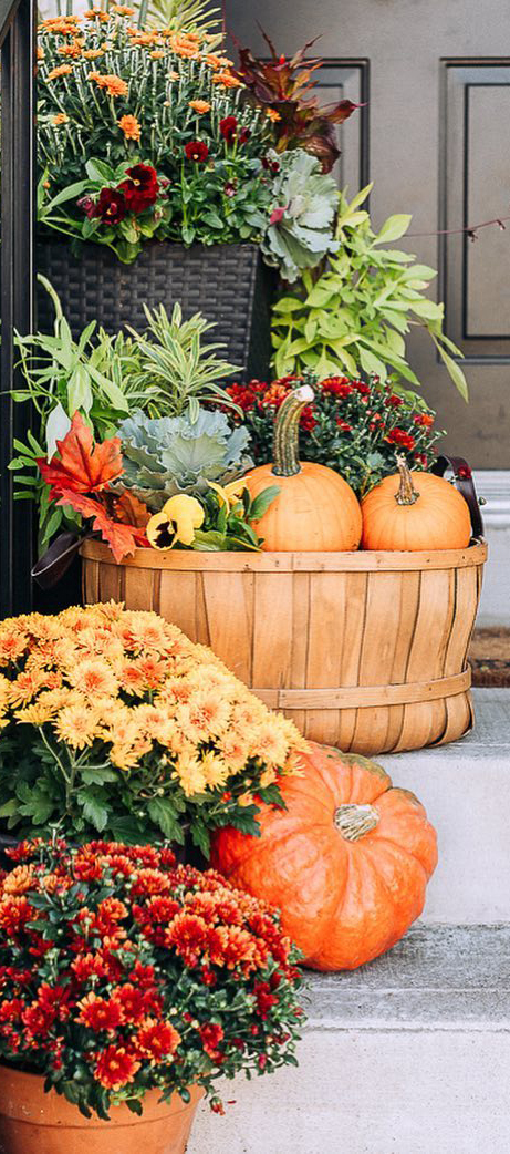 Fall Entrance Ideas | Craftberry Bush