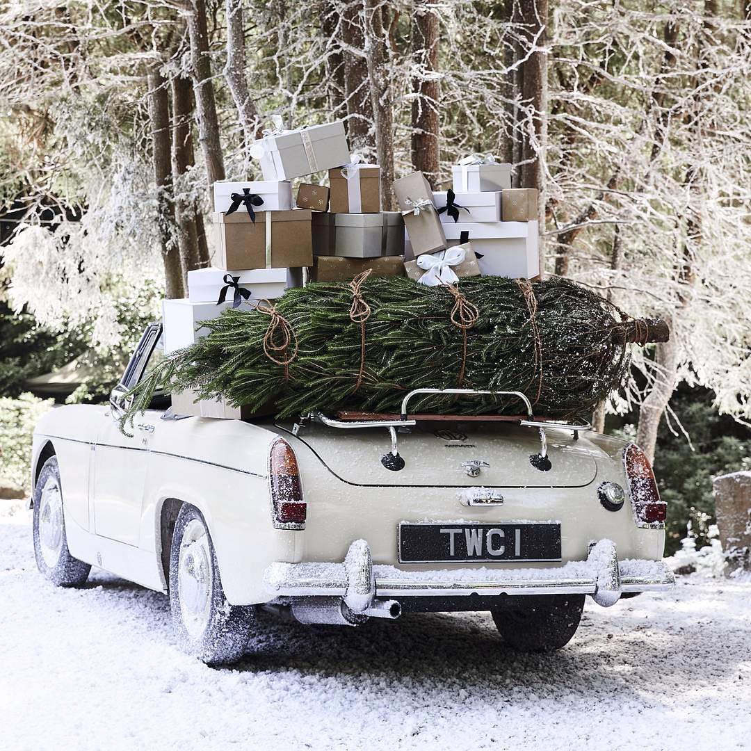 The Magic of Winter | The White Company