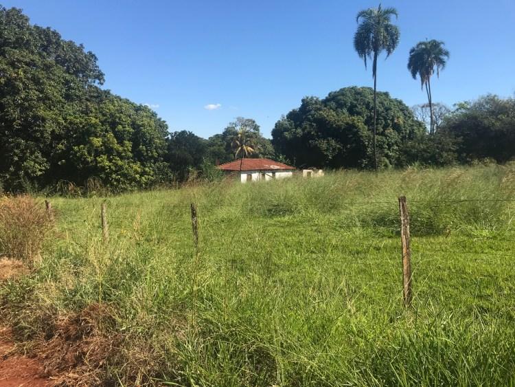Fazenda Lagoa Seca, município de Itumbiara Goias