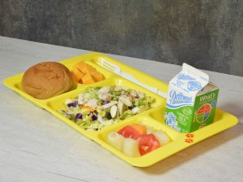 Co-Polymer Compartment Tray in Yellow (1596CP145)_3