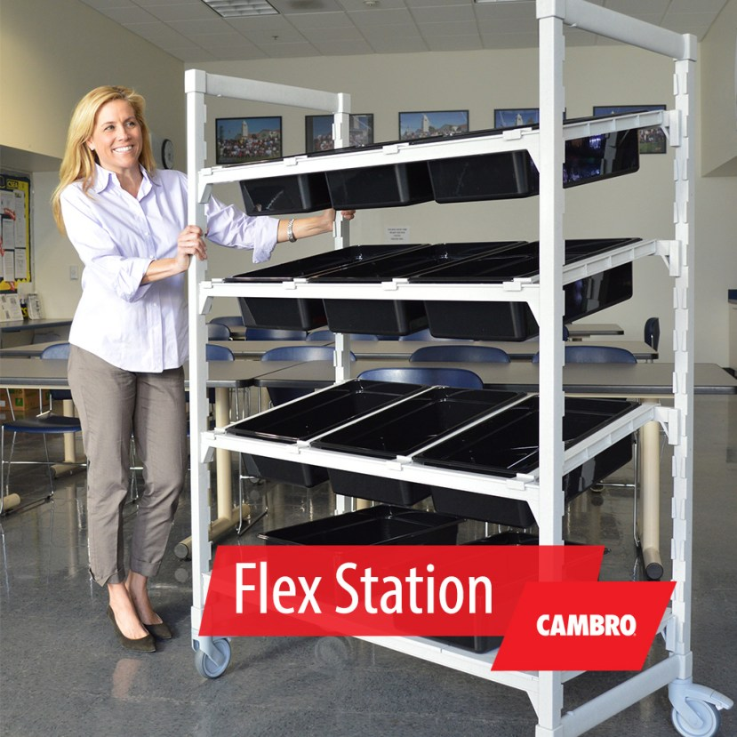 FlexStation1