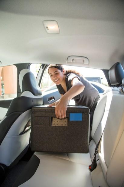 Prius Load Back Seat