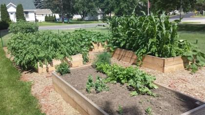 Middle School Garden