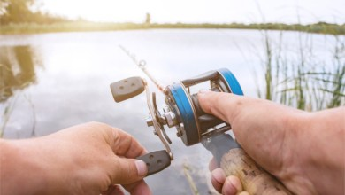 Photo of Our Guide To The Best Baitcasting Reels