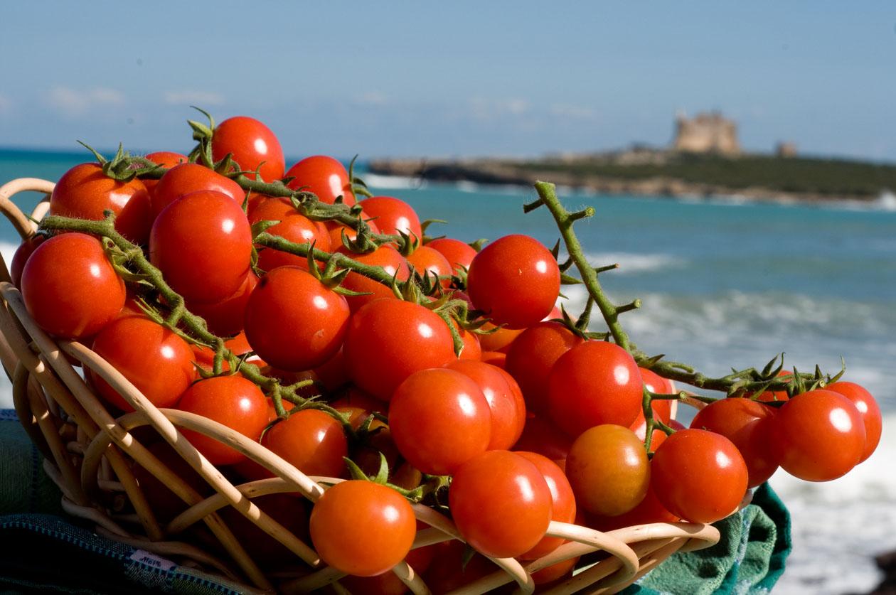 pomodorino pachino