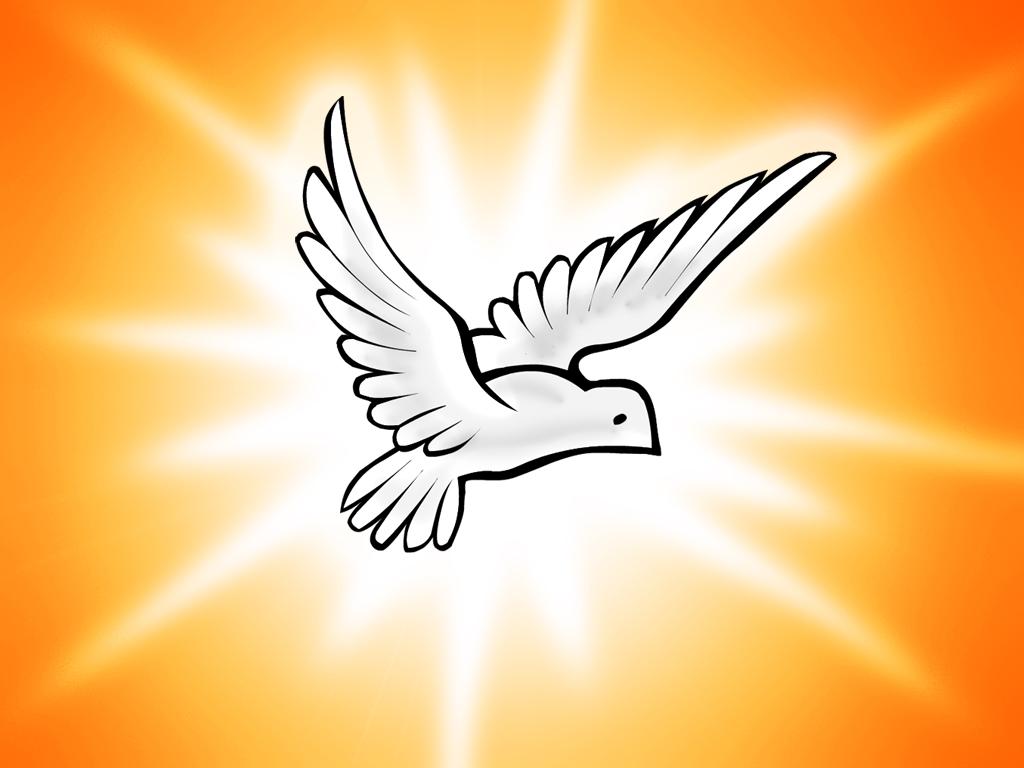 Novena Espírito Santo