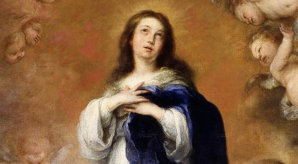 Resultado de imagem para A Bíblia atesta a Imaculada Conceição de Maria