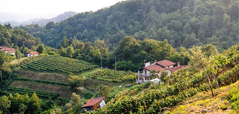 cantina La Psigula Vino Bramaterra