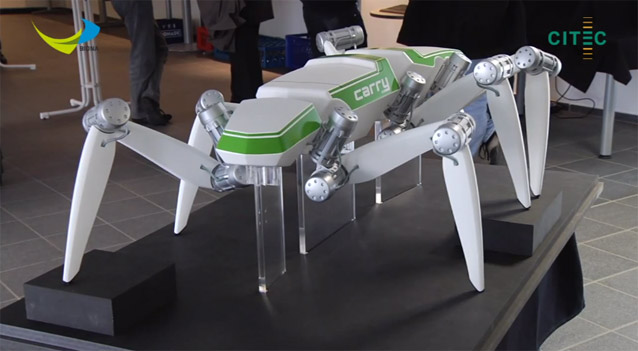 Hector carbon fiber insect robot
