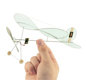 Carbon butterfly RC plane