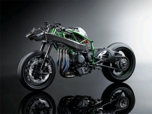 Ninja H2 Naked Sideview