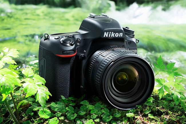 he D750 surrounded by grass