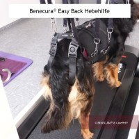 Benecura® Therapiegeschirr - Easy Back Hebehilfe
