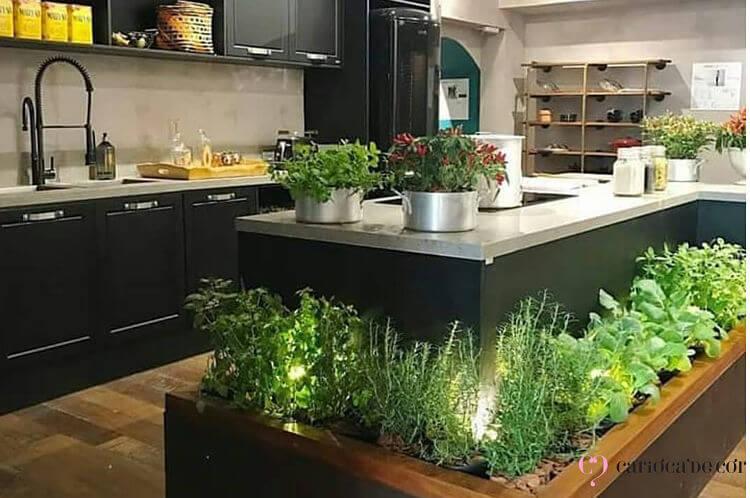 aplicação de horta na cozinha