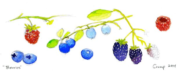 """Berries,"" Carol Crump Bryner, gouache, 2014"