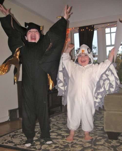 My grandsons in bat and owl costumes made by their mom Mara, Halloween 2013