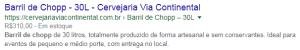 posicionamento no google da cervejaria via continental