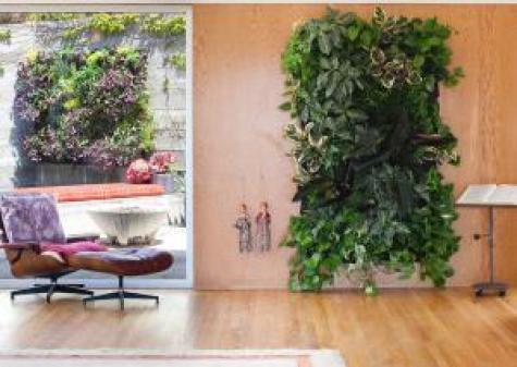 giardini in casa: Un esempio di giardino verticale con Wollypoket