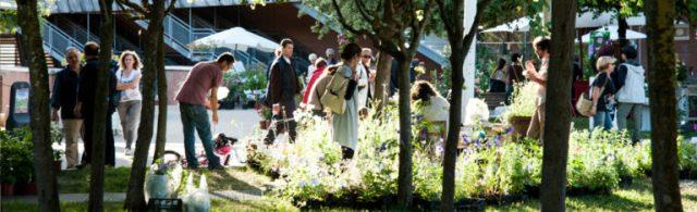 FESTIVAL DEL VERDE E DEL PAESAGGIO Giardini pensili - Auditorim Parco della Musica di Roma