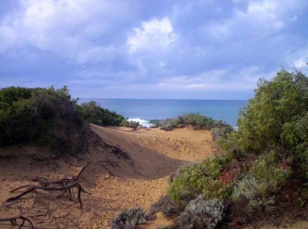 spiaggia libera - dune