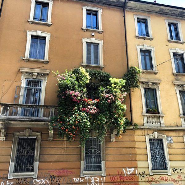 I diritti reali minori di godimento beni immobili - Diritto di abitazione su immobile in comproprieta ...