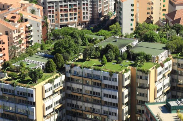 bonus verde incentivi per tetti verdi terrazze balconi