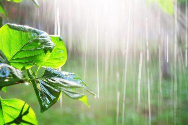 raccolta e utilizzo acqua piovana