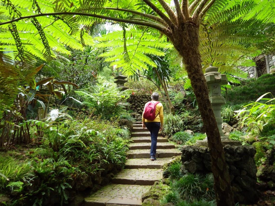 Parc tropical de Monte
