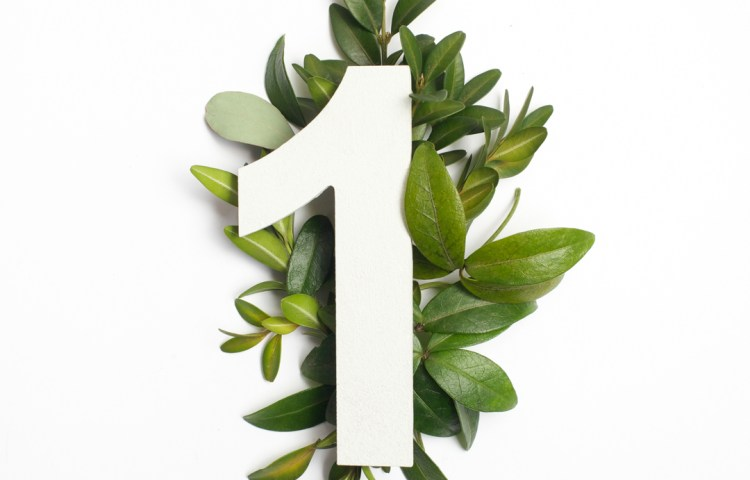 Number one shape with green leaves.