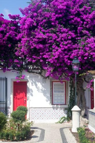 Miradouro De Santa Luzia Lisbon by Cattie Coyle Photography