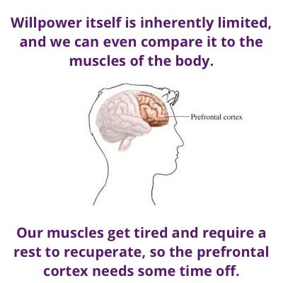 Cortex - willpower and goals