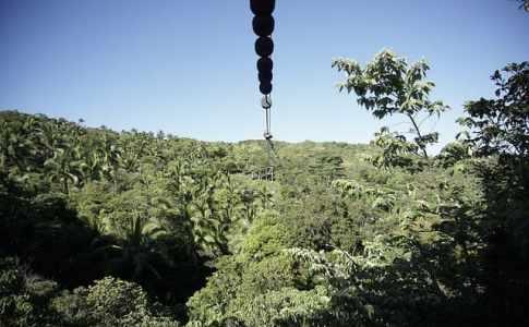 セブ島でジップライン体験の出来るスポット6選まとめ【完全ガイド】