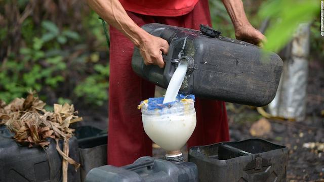 【フィリピンの飲み物8選】絶品のドリンクまとめ