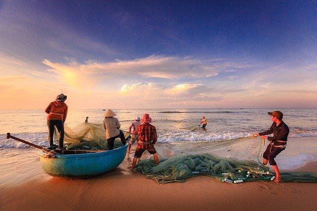 【フィリピンの魚】現地で食べられる魚 選まとめ