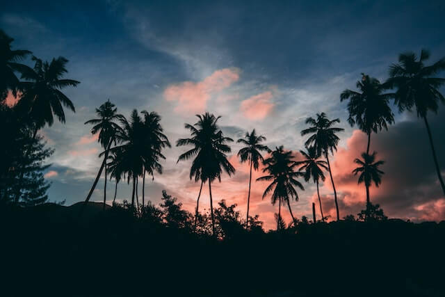 セブ島で夕日が綺麗に見える場所6選【サンセット】