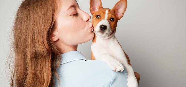 mejores razas perros departamentos