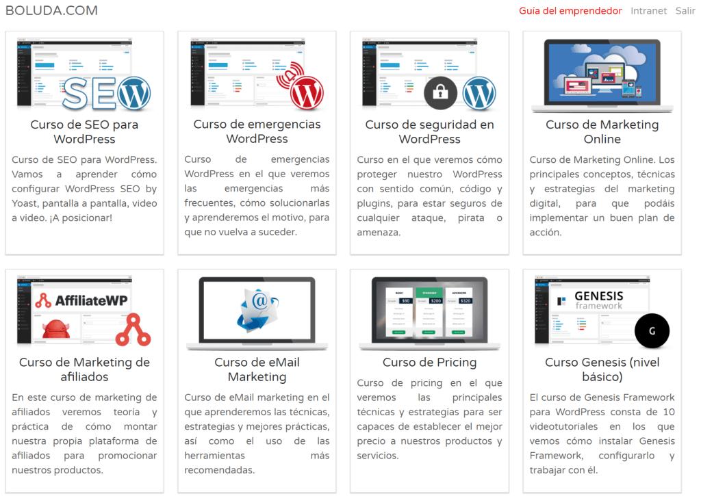 Algunos de los cursos de Boluda.com