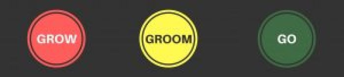 Grow-Groom-Go-Training & Development