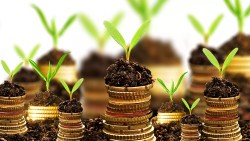 growing-money3