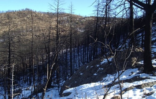 burn in December_sm