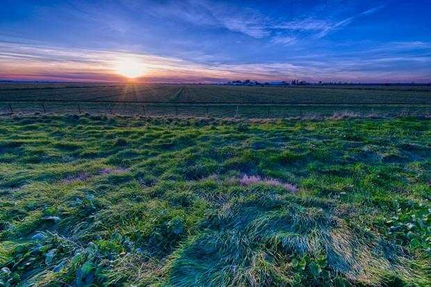 Delta Farm. Shot with the Nikon D800E and 14-24mm f/2.8G lens. © Sohail Mamdani